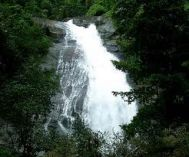 Calicut (Kozhikode) to Wayanad Family Tour Package 2 Nights-3 Days