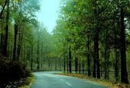 Kalpetta to Wayanad Tour Package 2 Nights-3 Days