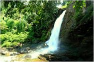 Bangalore to Wayanad Tour Package 2 Nights-3 Days