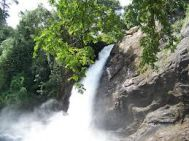 Kalpetta to Wayanad Waterfall Tour Package 2 Nights-3 Days
