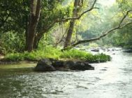 Kalpatta to Wayanad Cheap Tour Package 2 Nights-3 Days