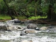 Chennai to Wayanad Group Tour Package 2 Nights-3 Days